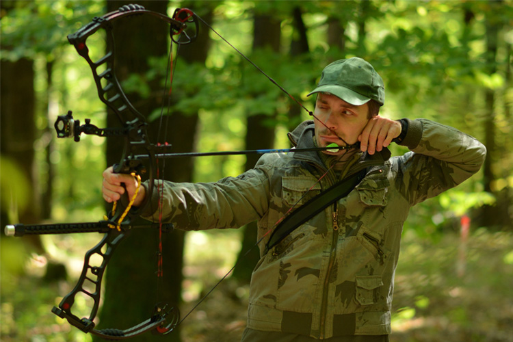 8 Best Archery Outfitters in Alaska