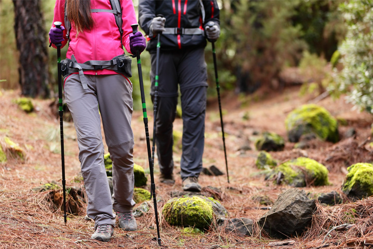 Start Your Trek: 7 Unbeatable Hiking Retailers in Alabama