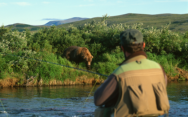 Arming in Bear Country: Facing Alaska's Imminent Danger
