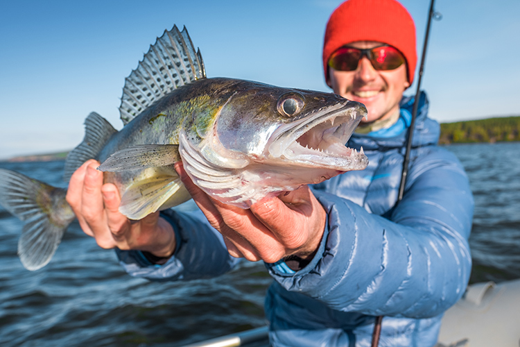 Fall Fishing: 6 Species to Target This Autumn