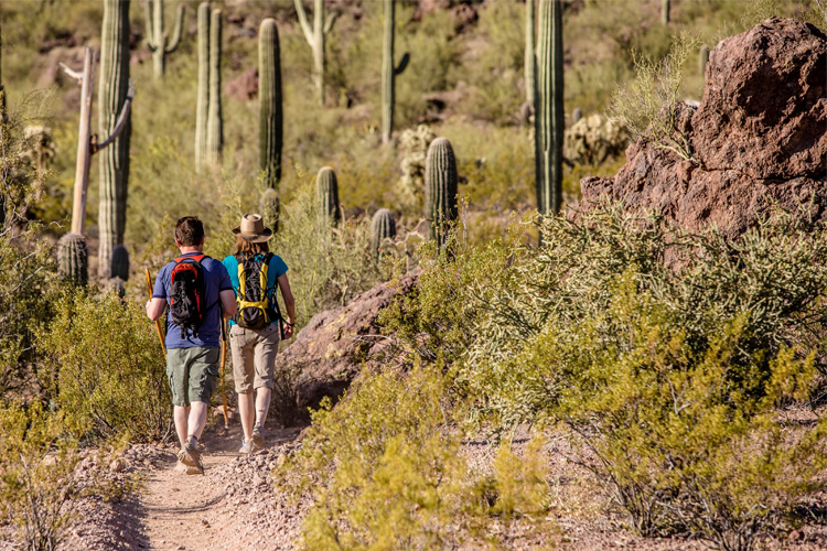 5 Energizing Hikes in Arizona