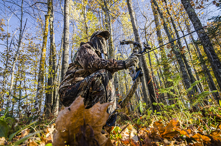 Getting Started: A Guide for the Novice Bowhunter