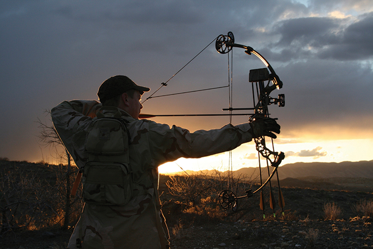 Bowhunting Basics: Information to Know Before Stepping Afield