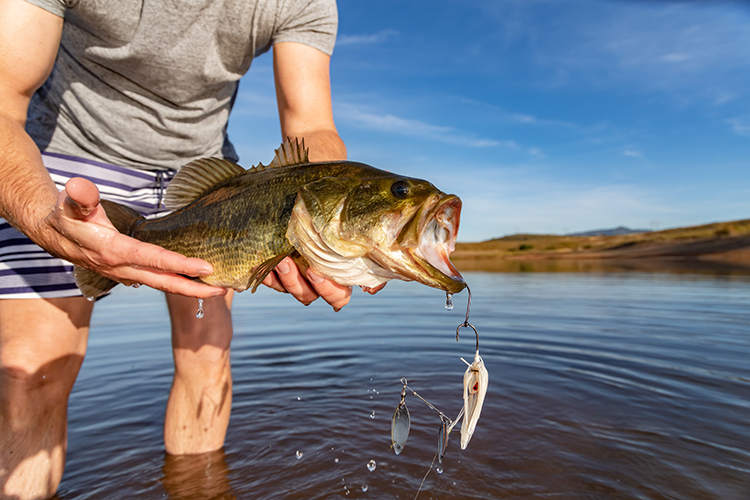 5 Fishing Tips for Early Spring Angling