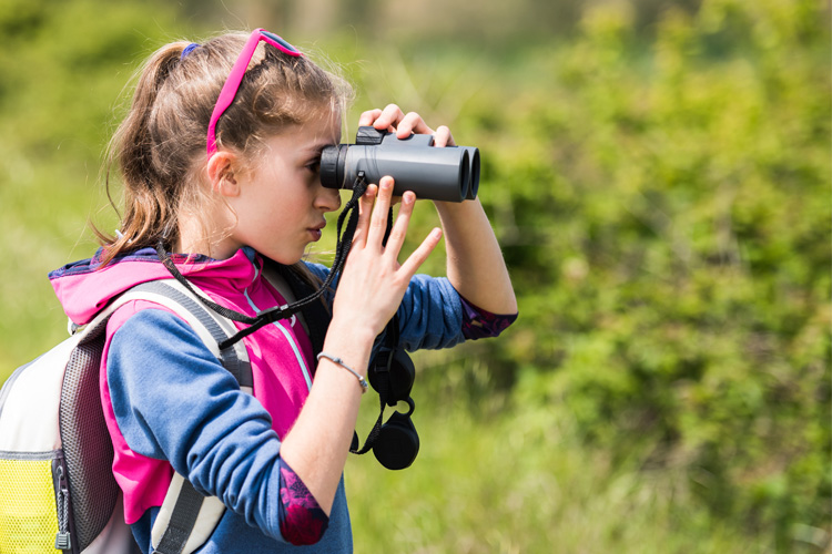 5 Wonderful Birdwatching Hikes in Florida
