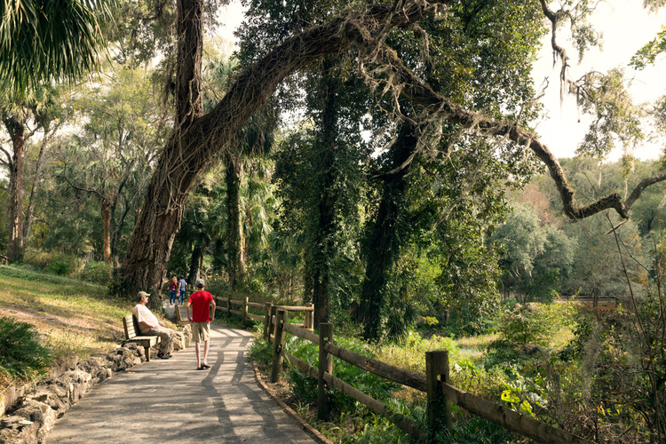 5 Great Hiking Trails in Florida