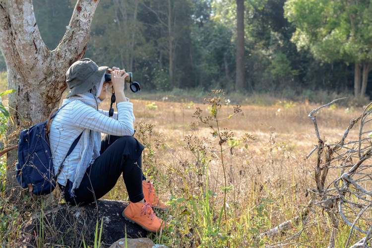 5 Best Birdwatching Hikes in Georgia