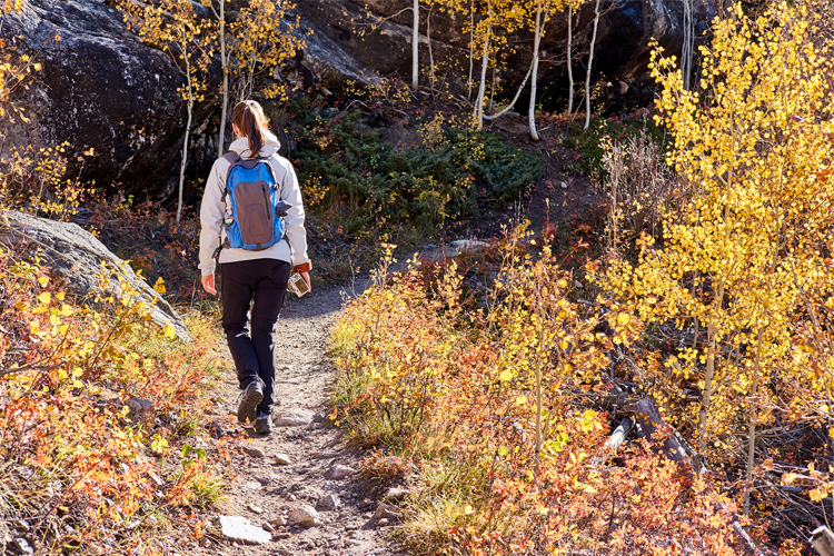 8 Best Outdoor Fall Activities in Illinois