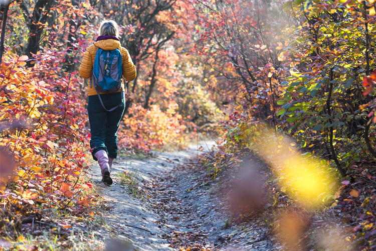 5 Energizing Hikes in Indiana