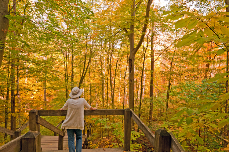 5 Beautiful Scenic Hikes in Indiana