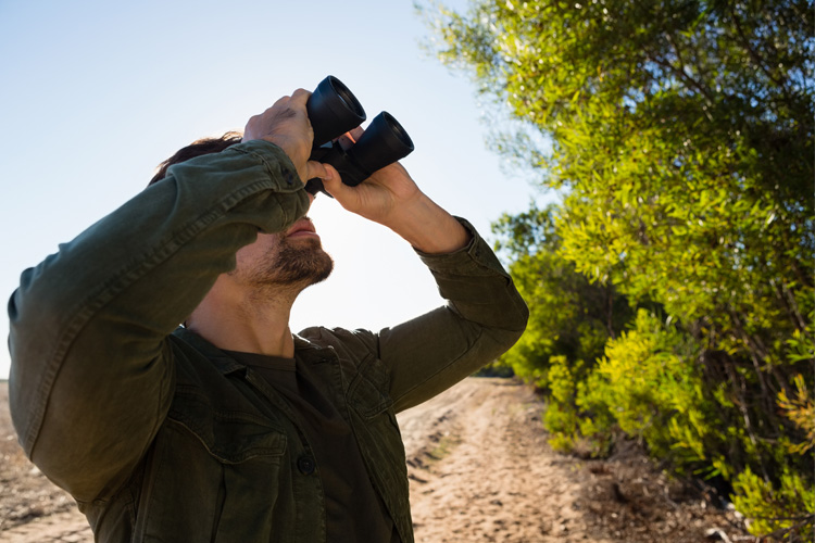 7 Best Birdwatching Hikes in Kansas