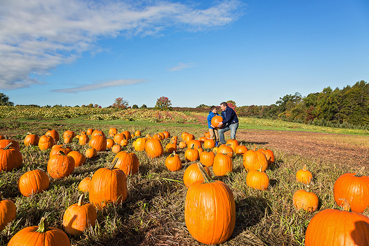 8 Best Outdoor Fall Activities in Kansas