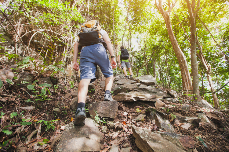 5 Great Hiking Trails in Maryland