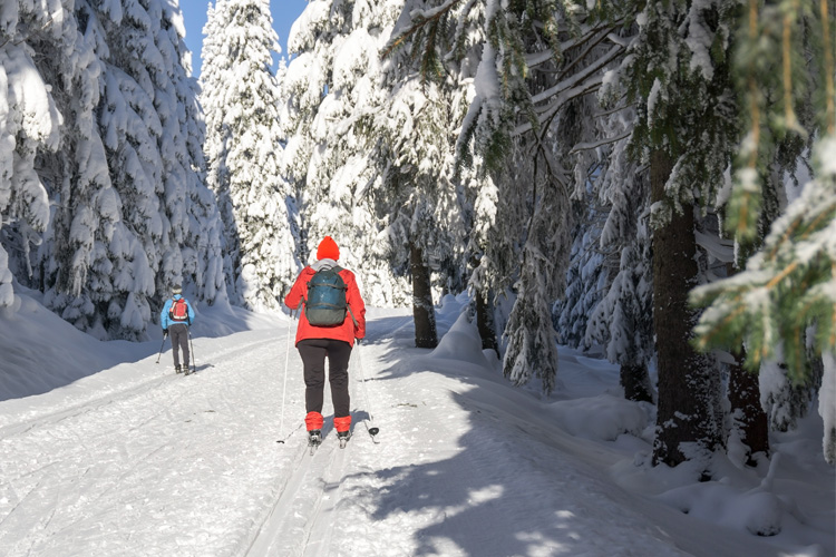 The Best Cross-Country Skiing Adventure in Maine