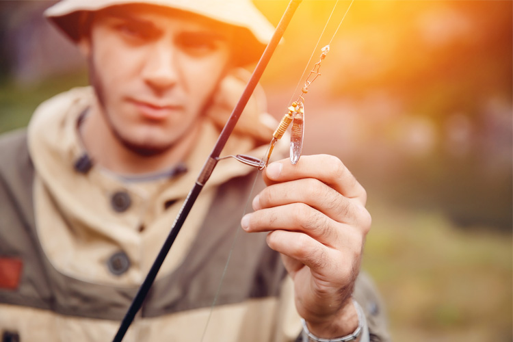 10 Best Bait and Tackle Shops in Minnesota