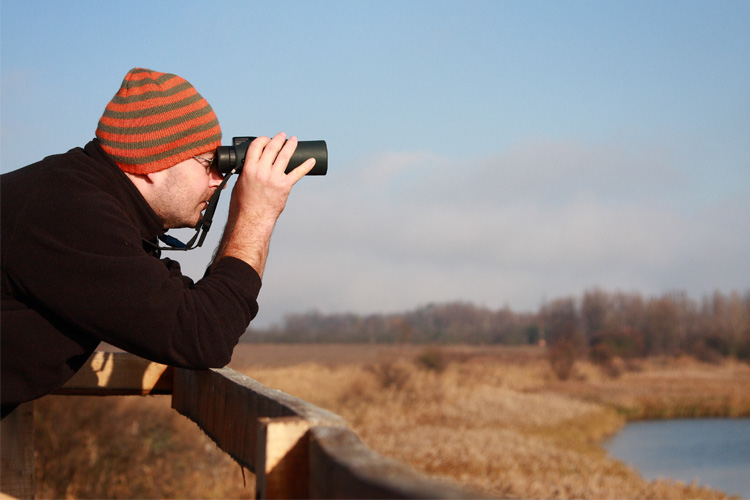 5 Best Birdwatching Hikes in Mississippi