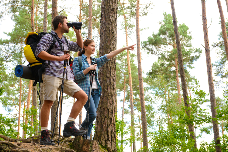 5 Great Hiking Trails in Mississippi