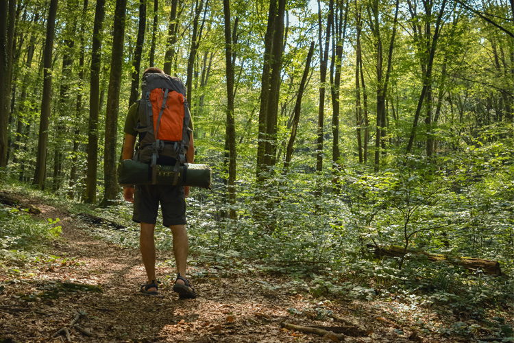 Start Your Trek: 7 Best Hiking Retailers in Mississippi