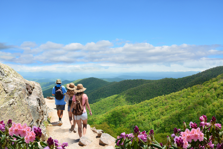 5 Beautiful Scenic Hikes in North Carolina