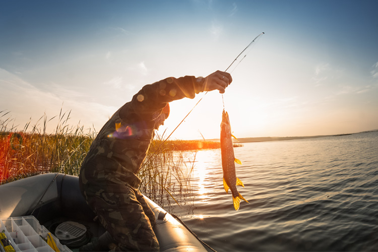 7 Best Bait and Tackle Shops in Nebraska