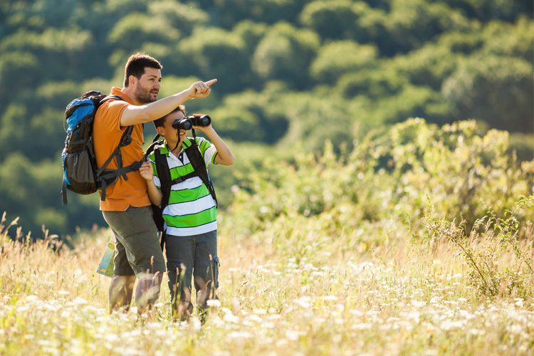 5 Best Birdwatching Hikes in Nebraska