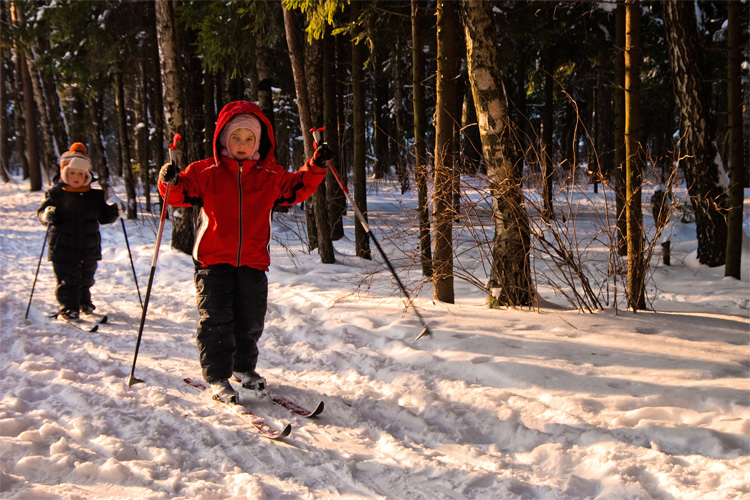 The Best Cross-Country Skiing Adventure in New Mexico
