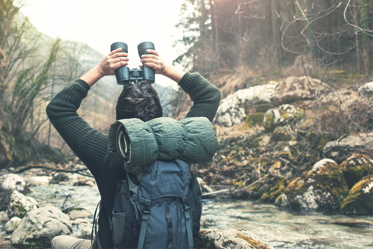 5 Best Birdwatching Hikes in New York