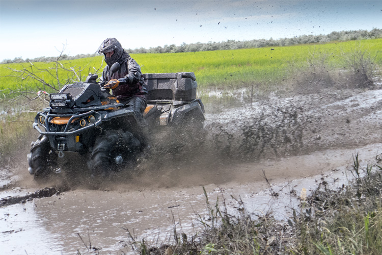 ATV Off-Roading Adventure in Lewis County