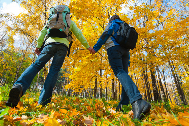 5 Stunning Foliage Hikes in Ohio