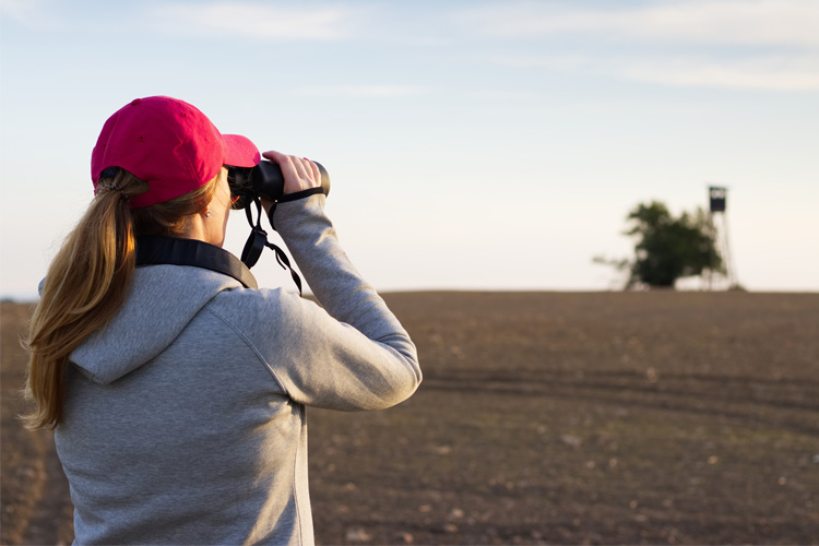 5 Best Birdwatching Hikes in Oklahoma