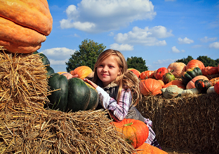7 Best Outdoor Fall Activities in Oklahoma