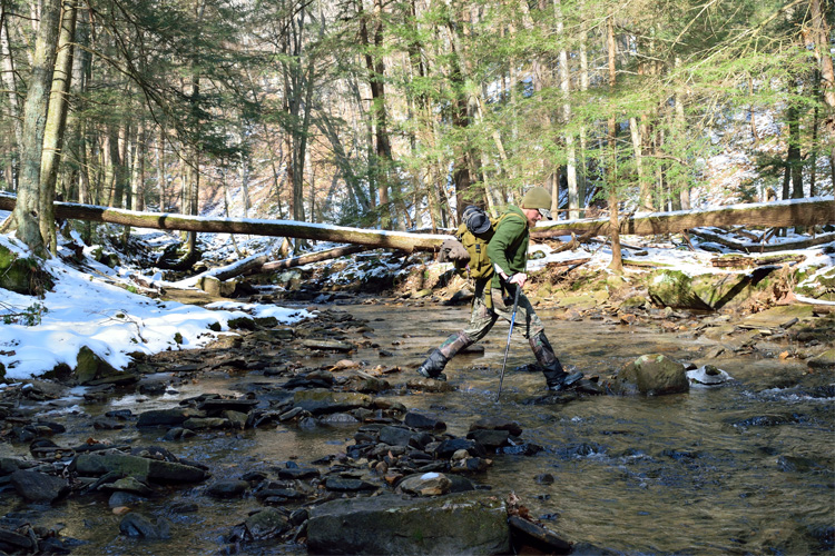 Best Winter Weekend Getaway in Allegheny National Forest