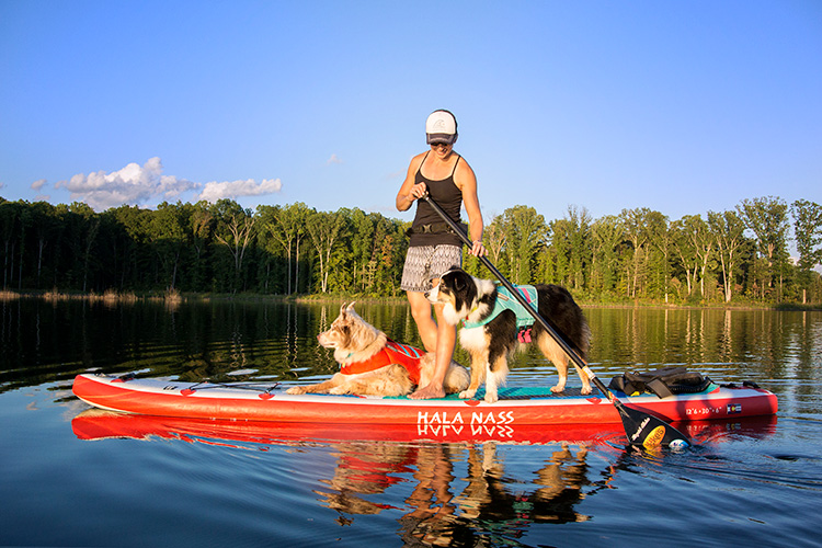Paddleboarding Made Easy—Get Started Now!