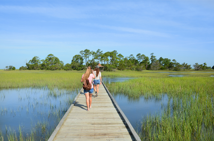 5 Beautiful Scenic Hikes in South Carolina