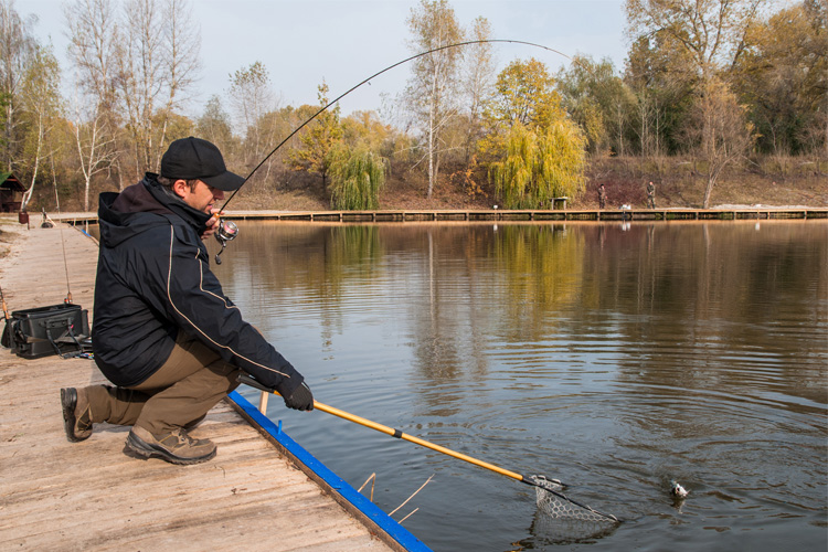 10 Best Bait and Tackle Shops in Tennessee