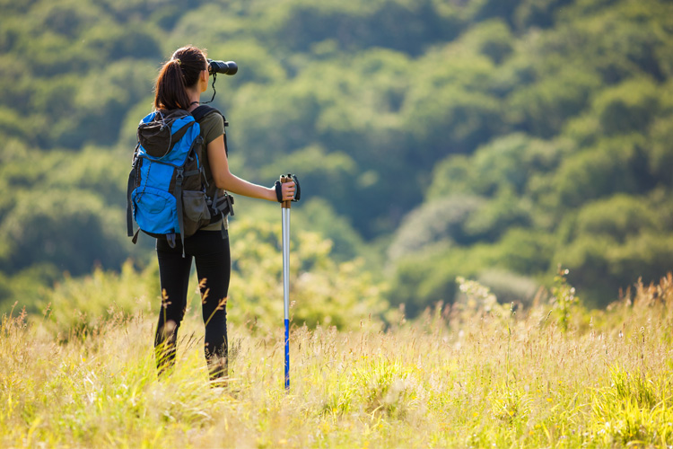 Start Your Trek: 7 Unbeatable Hiking Retailers in Tennessee