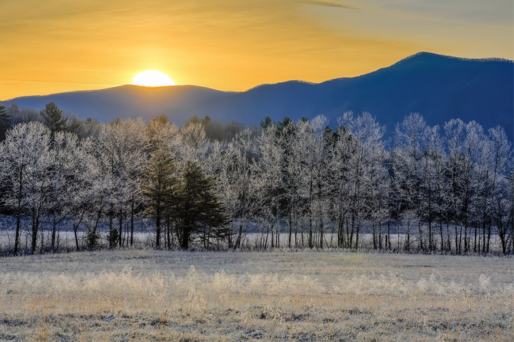 Best Winter Weekend Getaway in Great Smoky Mountains National Park