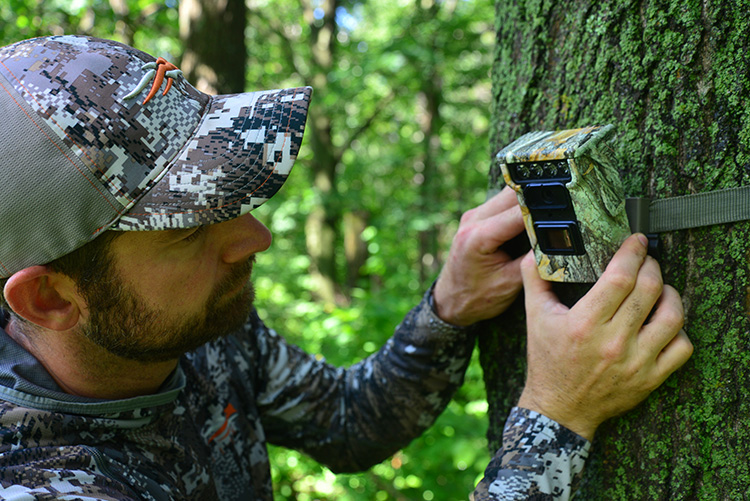 Trail Cameras: How to Choose the Best for Deer Hunting