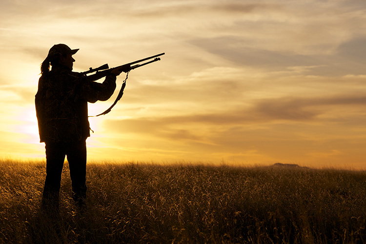 A Beginner's Guide to Hunting