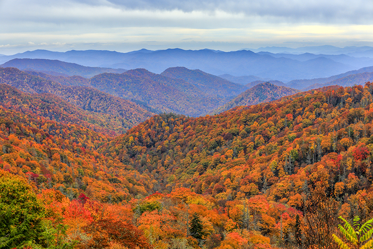 5 Fall Foliage Hikes for the Best Leaf Peeping