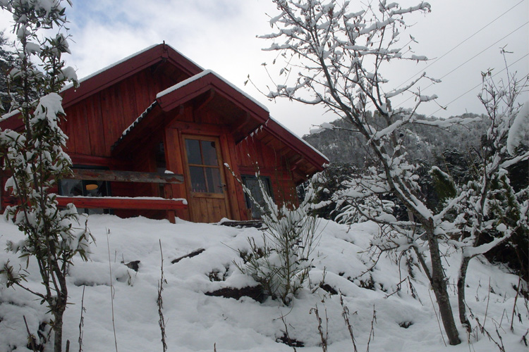 6 Best Winter Cabin Camping Spots in Utah