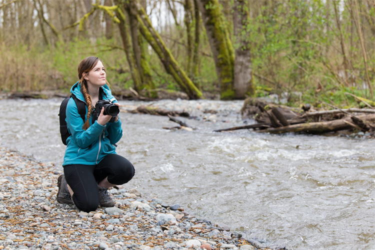 5 Wonderful Birdwatching Hikes in Washington State