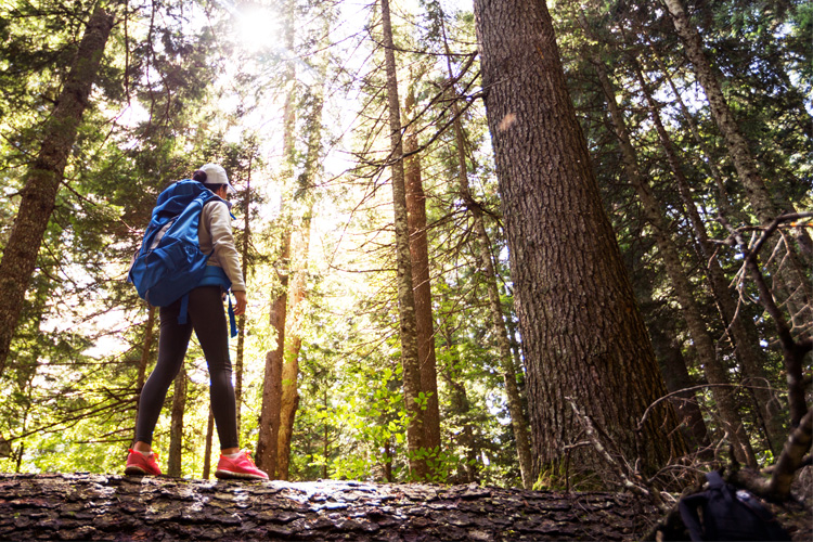 5 Beautiful Backpack Camping Spots in Wisconsin