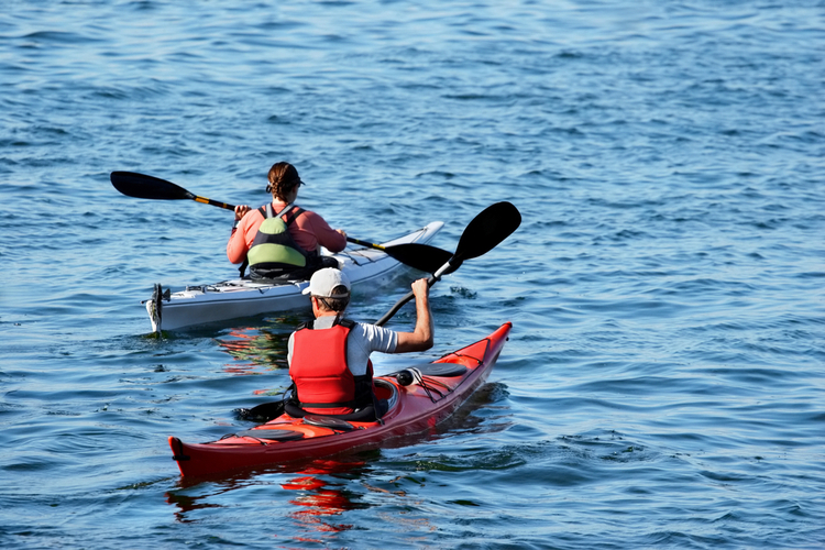 5 Excellent Places for Beginners to Kayak in Wisconsin