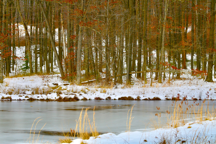 Best Winter Weekend Getaway at Coopers Rock State Forest